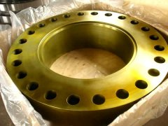 Forged Flange ANSI B16.9